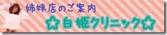 アイコン.白姫紹介